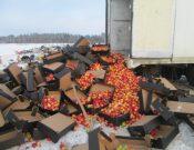 На Брянщину окольными тропами пытались провезти яблоки сомнительного качества