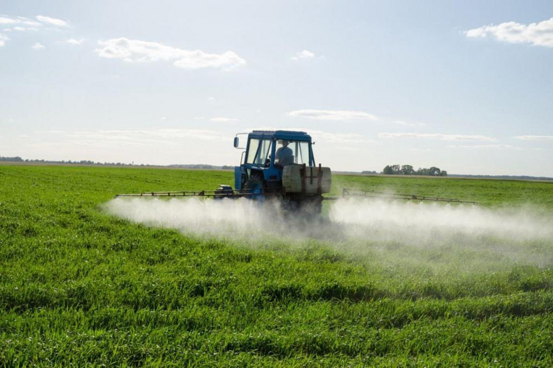 Жителей новозыбковских сел не предупреждали о грядущих обработках полей